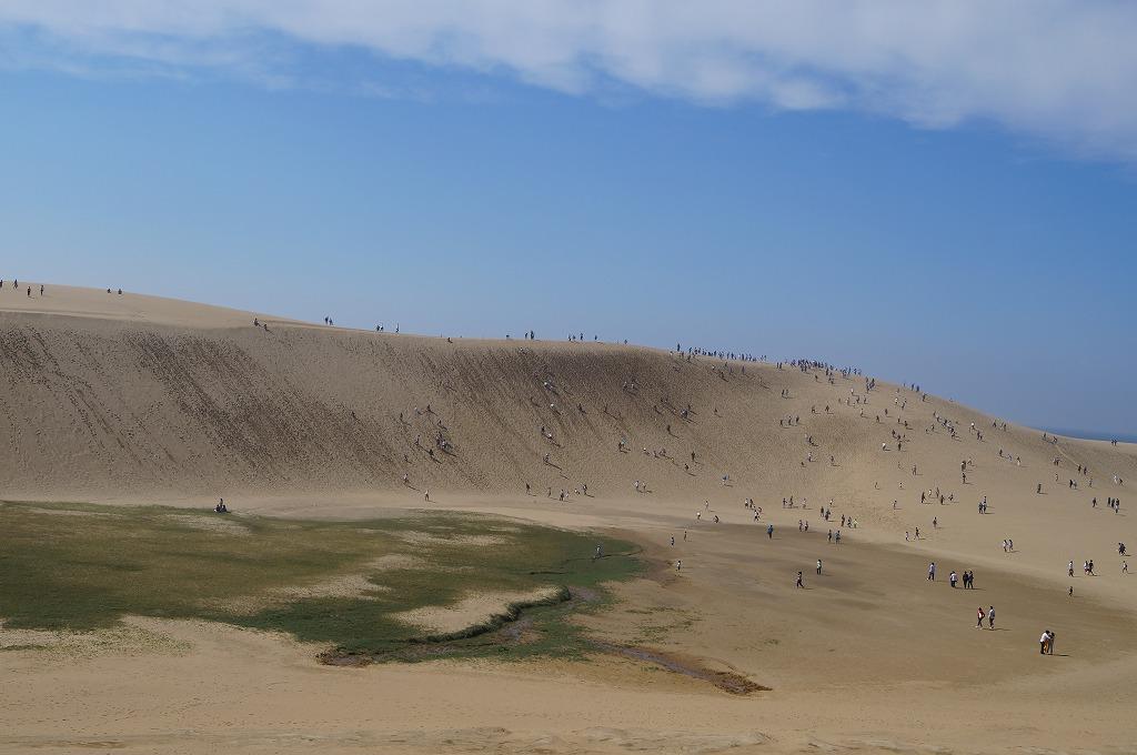 鳥取砂丘は想像以上のスケール!馬の背登ろう