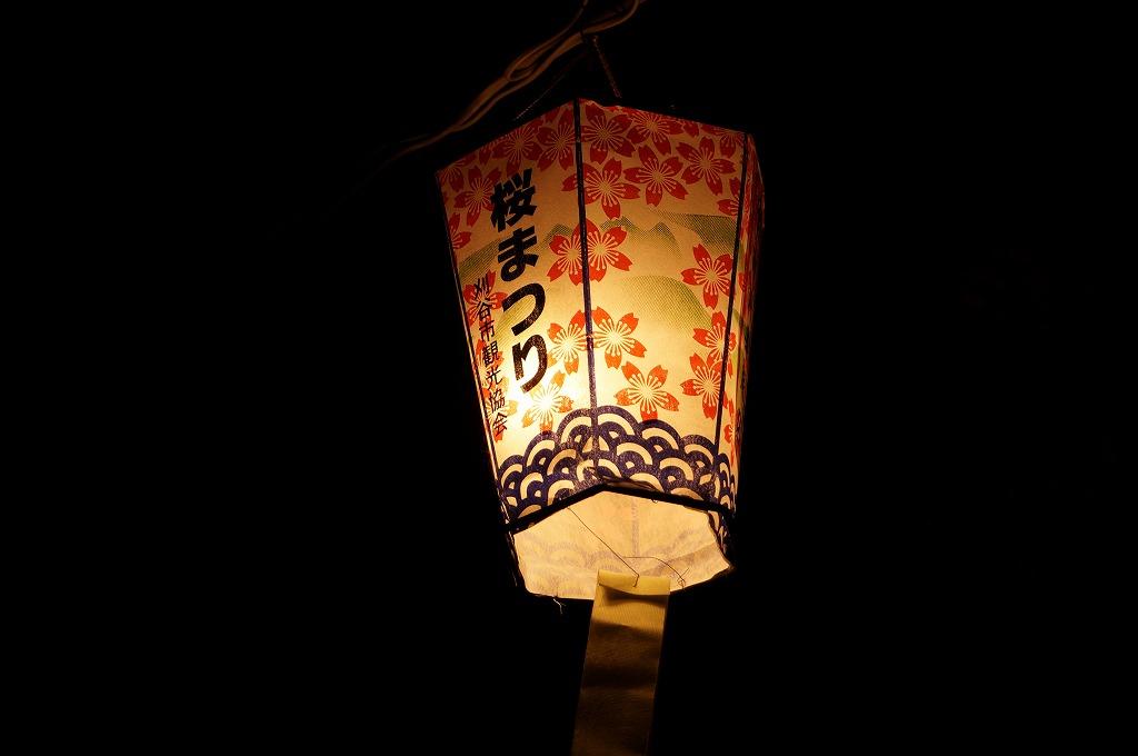 刈谷市亀城公園で夜桜